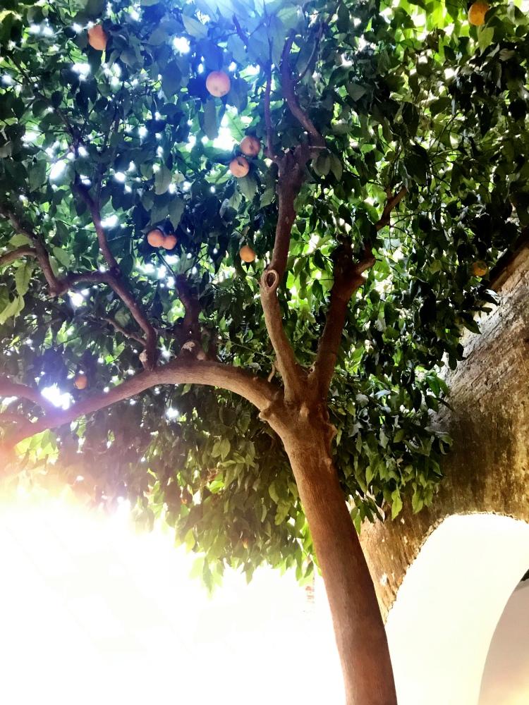 Alhambra_interieur4